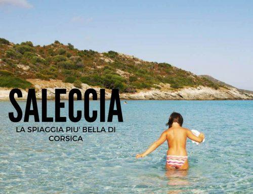 Saleccia: la spiaggia più bella della Corsica