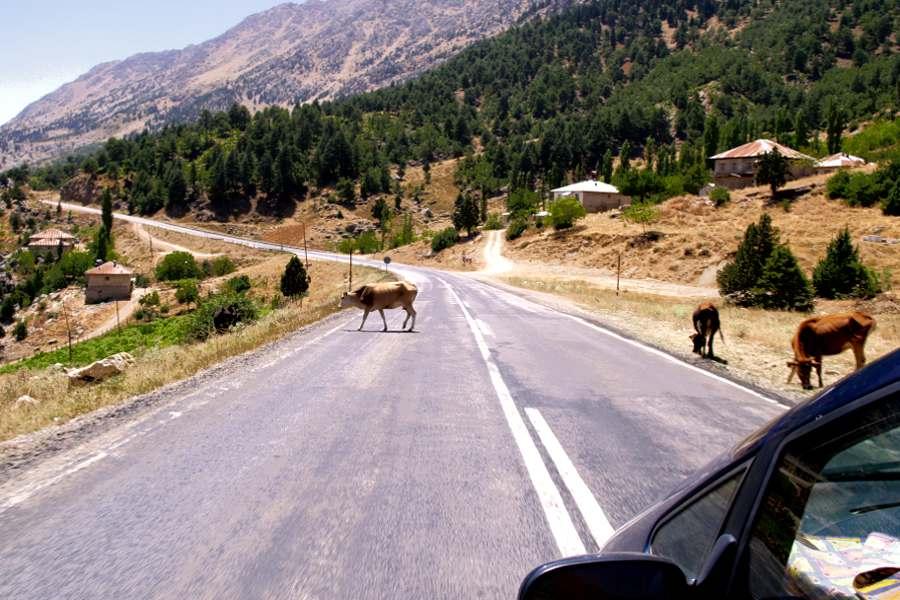 Nemrut Dagi la statale per il monte all'interno della Turchia