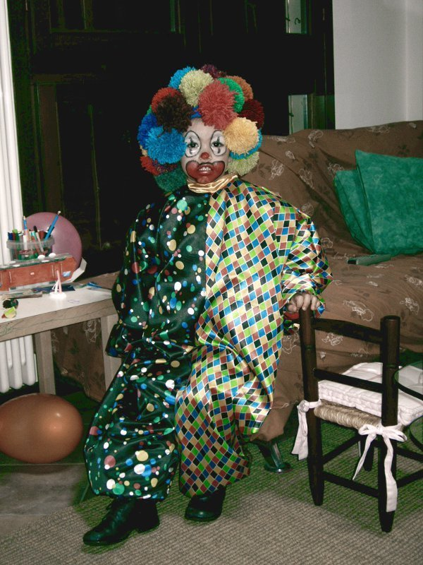 Carnevale pagliaccio parrucca
