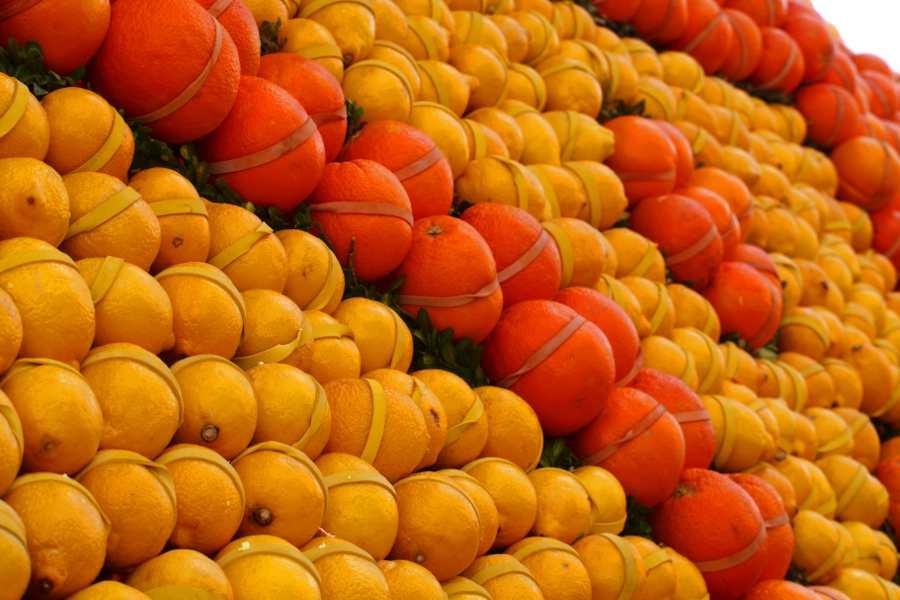 Mentone Limoni e arance