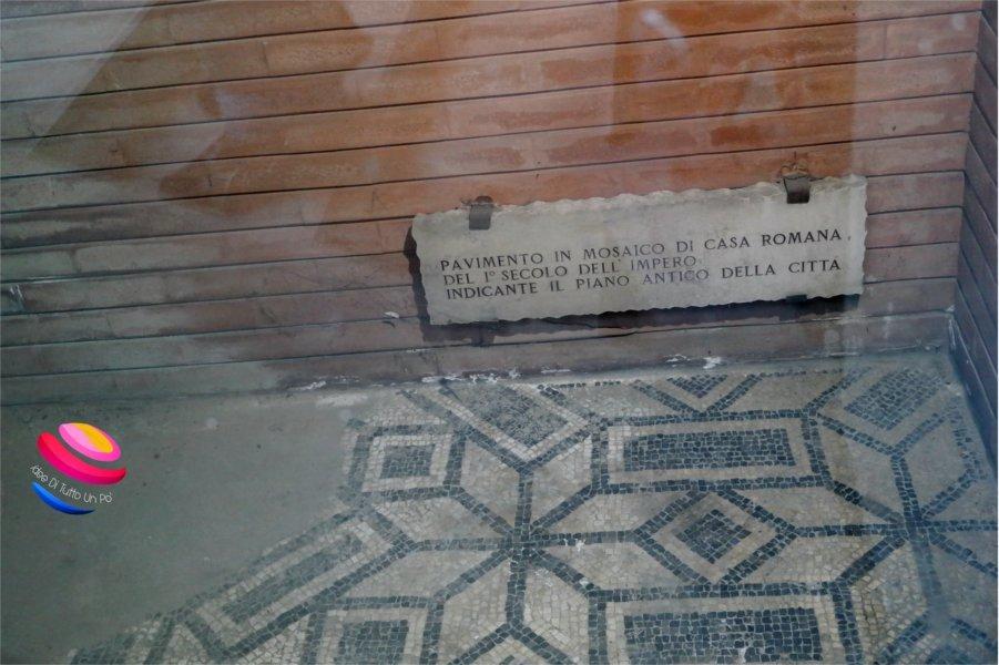 trekking urbano mosaico bologna