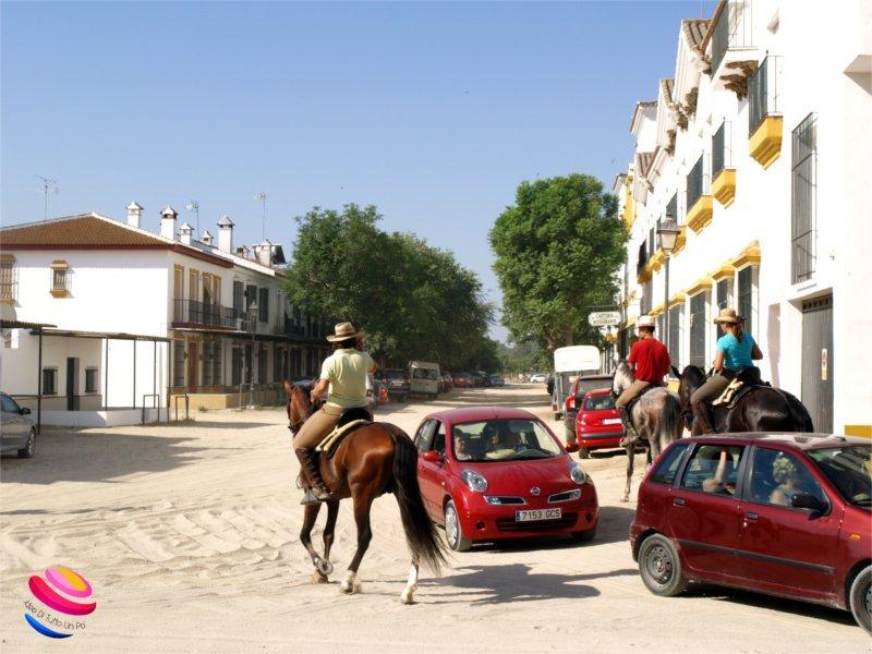 strade cavalli auto El Rocio