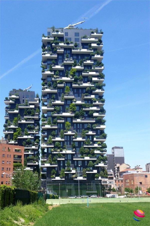 Milano cosa vedere bosco verticale