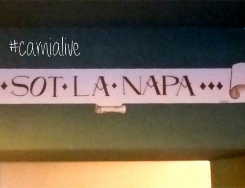 """Sot la Napa: agriturismo """"diffuso"""" in Carnia"""