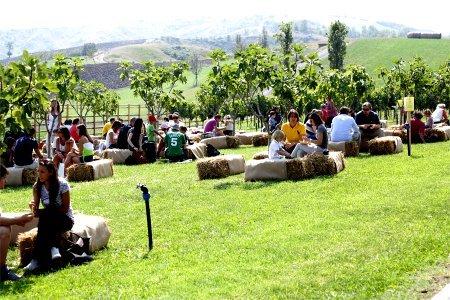 Rural festival pubblico