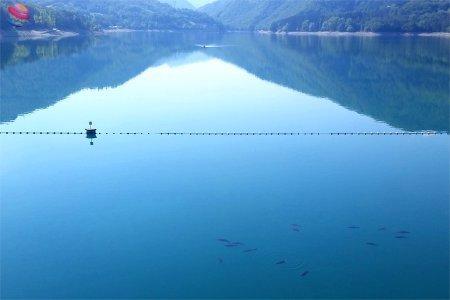 lago di suviana pesca di carpe