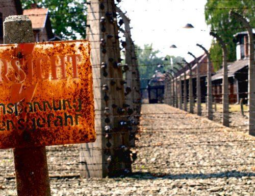 Visitare Auschwitz: le impressioni di una teen
