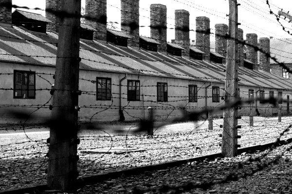 visitare auschwitz filo spinato sul perimetro