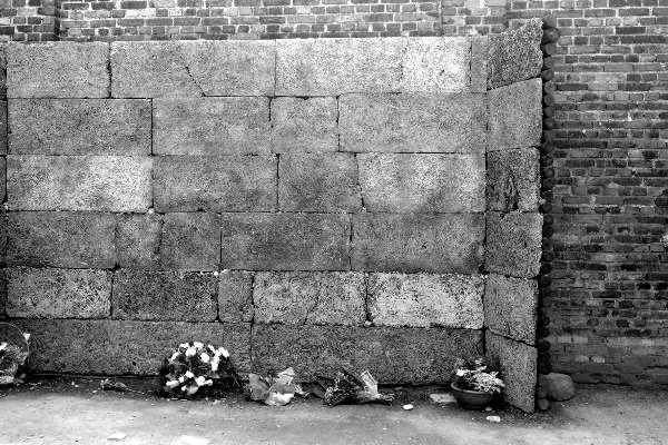Visitare Asuchwitz il muro delle fucilazioni