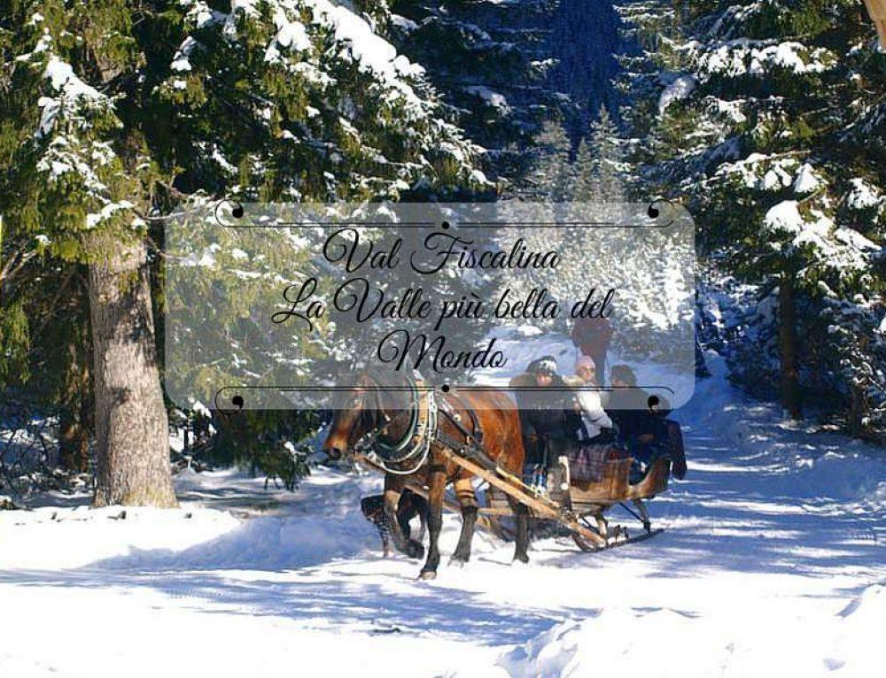 Val Fiscalina: la valle più bella del mondo