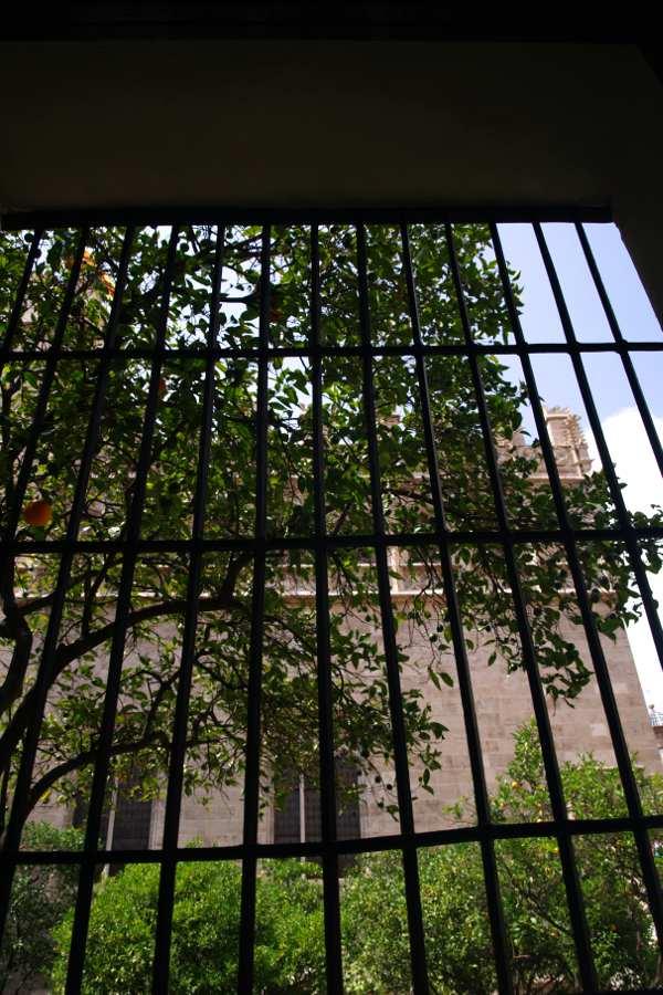 Valencia cosa vedere la finestra della Lonja