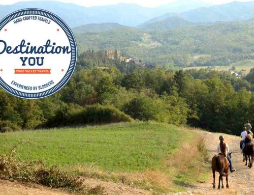 Parma dalla città alle nobili colline: l'itinerario pensato per te