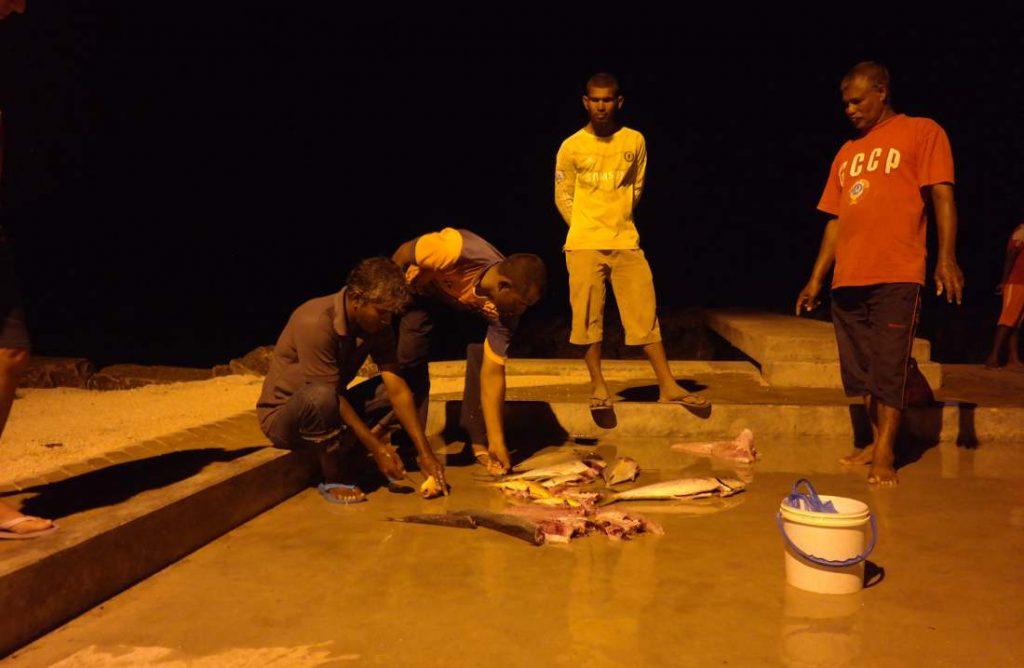 isole maldive pesca
