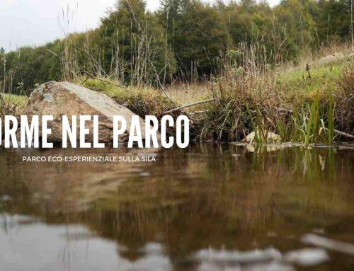 """Orme nel Parco: Parco avventura in stile """"Ispirato"""""""