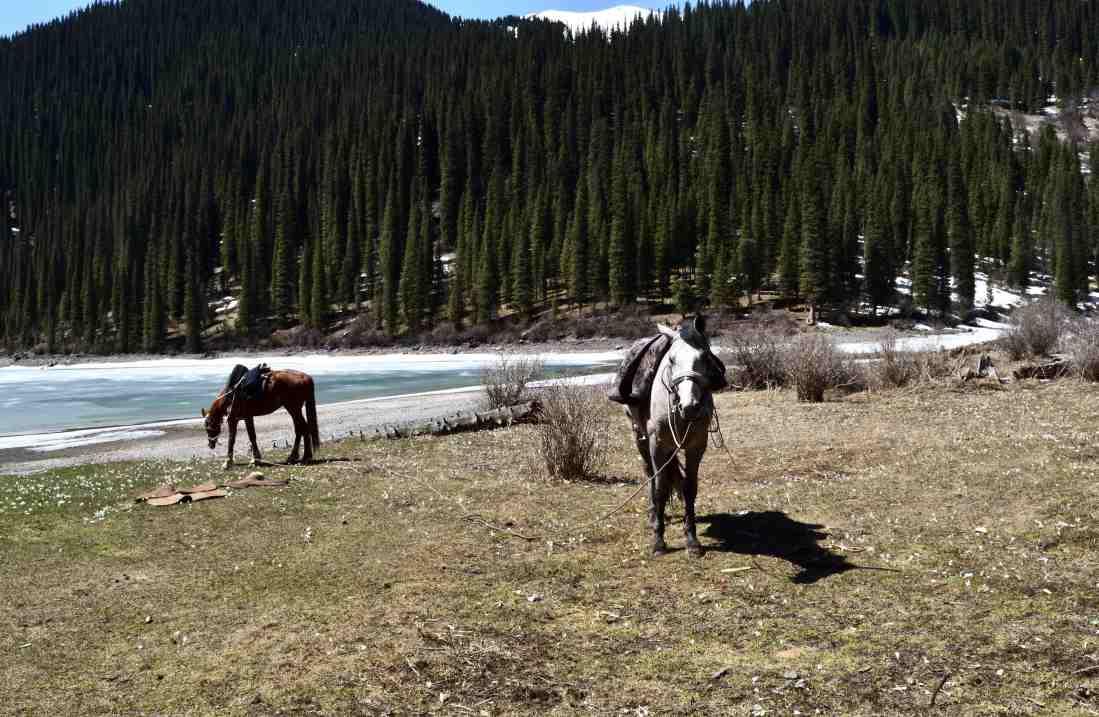 Kazakistan lago Kolsay