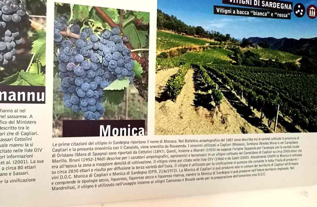 Berchidda-museo-del-vino