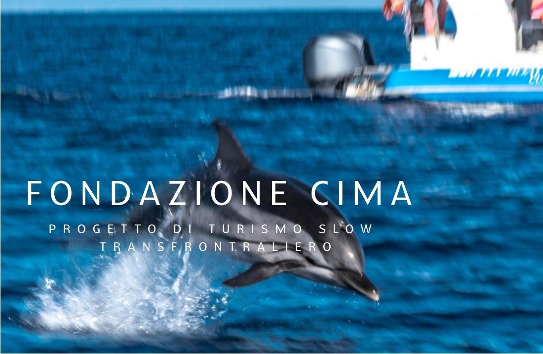 Fondazione Cima stenella