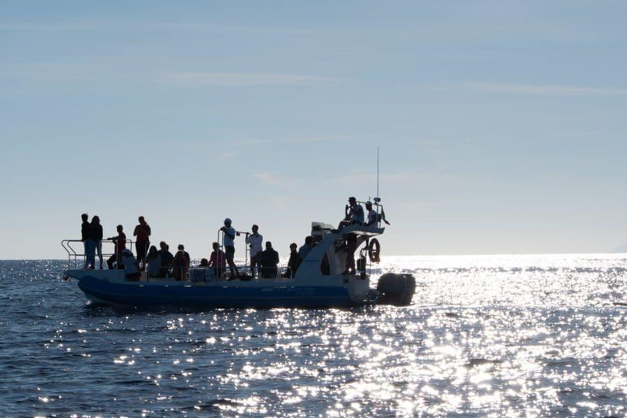 Fondazione Cima escursione con Sea Safari